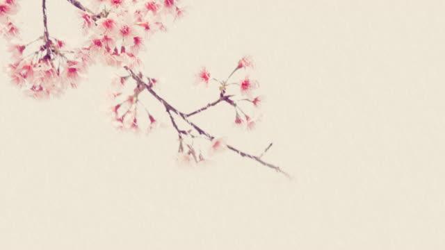 雨の日にコスモスのビンテージ トーン色です。背景の美しい花です。 - 四月点の映像素材/bロール