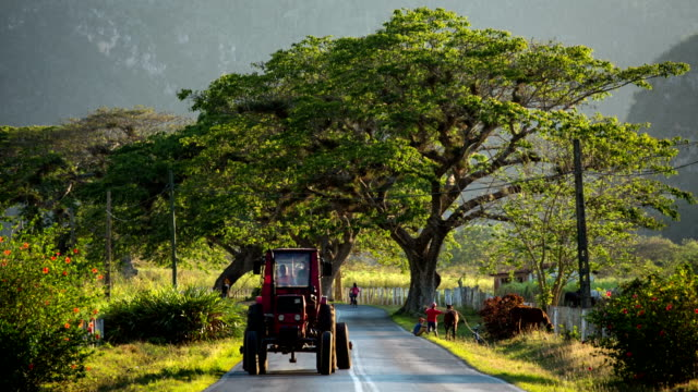 vintage tractor on country road / cuba - tractor stock videos & royalty-free footage