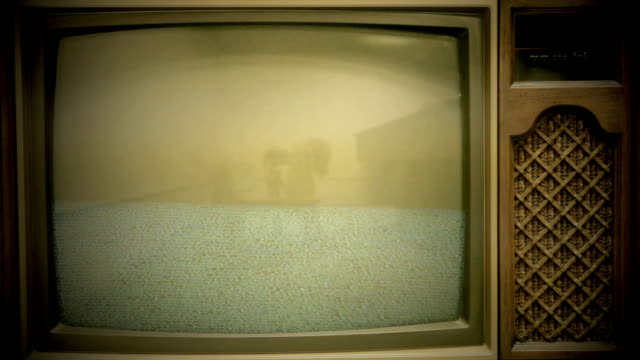 Vintage TV Showing Static on Screen (HD,NTSC)