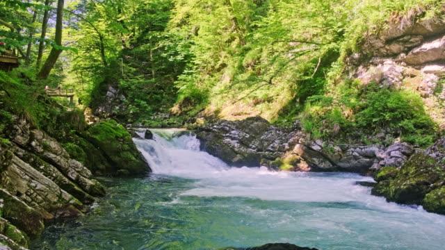 ヴィントガー渓谷、トリグラフ国立公園、ジュリアンアルプス - 湧水点の映像素材/bロール