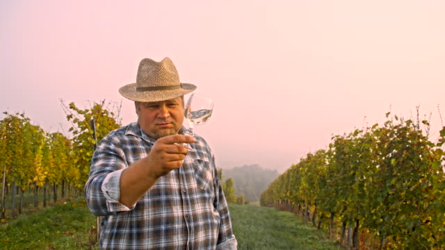 WS Vintner Inspecting The Quality Of A Wine