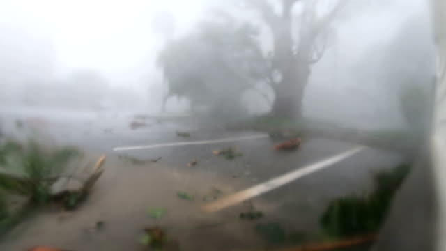 violent eyewall wind and rain from typhoon lingling lashes miyakojima in japan - tropical storm stock videos & royalty-free footage