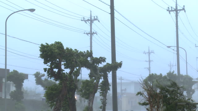 violent hurricane eyewall winds lash city - ケーブル線点の映像素材/bロール