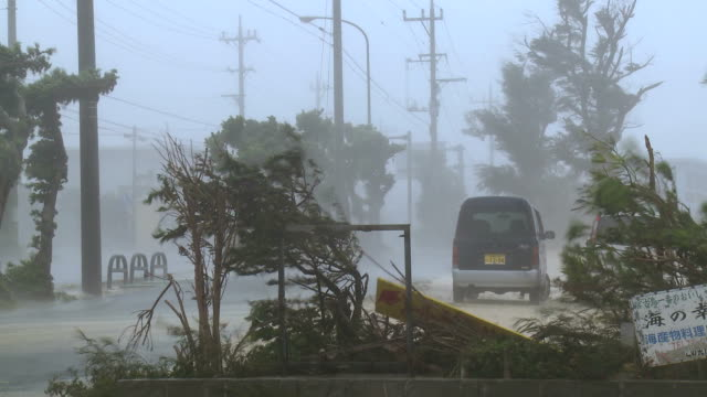 violent hurricane eyewall winds lash city - klima stock-videos und b-roll-filmmaterial