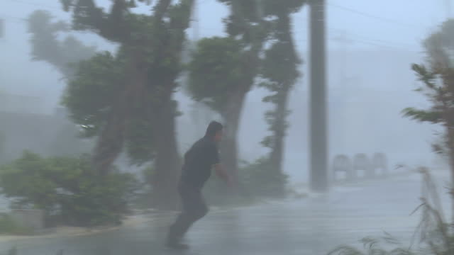 vidéos et rushes de violent hurricane eyewall winds lash man - wind