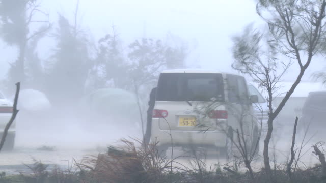Violent Hurricane Eyewall Winds Lash Man