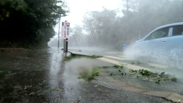 violent wind and torrential rain lashes gopro camera mounted in street in eye wall of typhoon trami hits okinawa japan - typhoon stock videos and b-roll footage