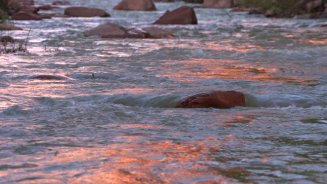 virgin river red rock reflection - ザイオン国立公園点の映像素材/bロール