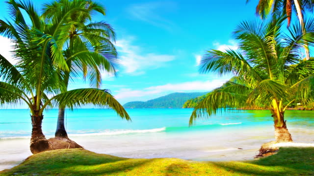 Virgin tropical island.
