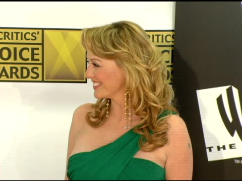 virginia madsen at the 2006 critics' choice awards arrivals at santa monica civic auditorium in santa monica california on january 9 2006 - virginia madsen stock videos & royalty-free footage
