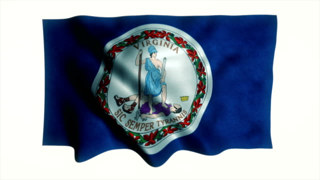 virginia state flag - virginia us state stock videos & royalty-free footage