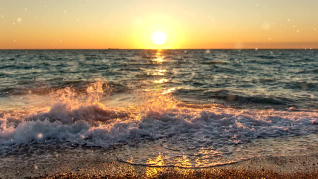 virtuell verklighet. 3d foto (parallax). havet - sea robin bildbanksvideor och videomaterial från bakom kulisserna