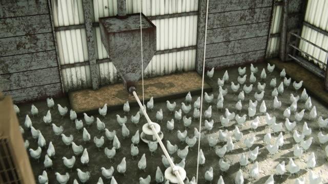 virus animation - livestock stock videos & royalty-free footage