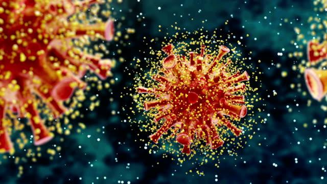 virus cells - profase video stock e b–roll