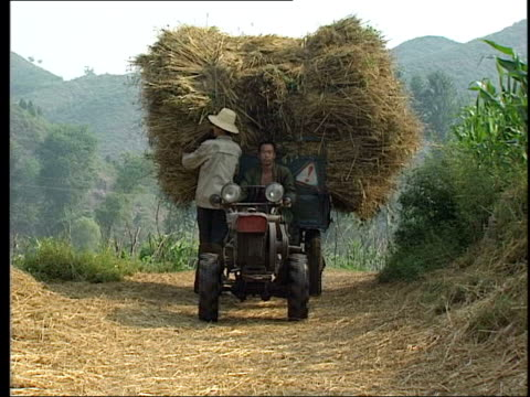 china outbreak/quarantine calls; lib china: weihai: ext farmer along on tractor loaded with hay farmworkers sorting crops - 重症急性呼吸器症候群点の映像素材/bロール