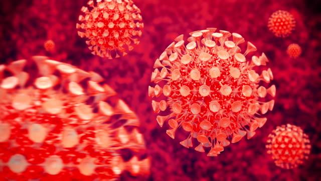 virus closeup - citochinesi video stock e b–roll