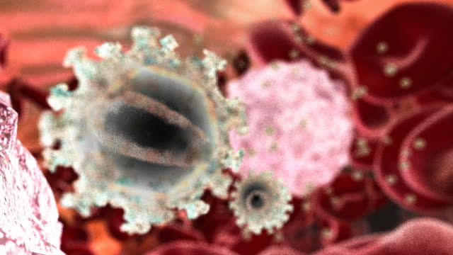 aids virus (hiv) in the human body - malattia a trasmissione sessuale video stock e b–roll