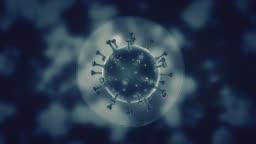 Viruses under microscope Seamless loop. stock video