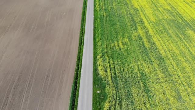 visingso, sewden aerial view - crucifers 個影片檔及 b 捲影像