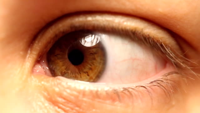 vision の - 茶色点の映像素材/bロール