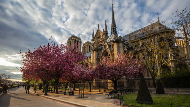visiting notre dame at spring - notre dame de paris stock videos and b-roll footage