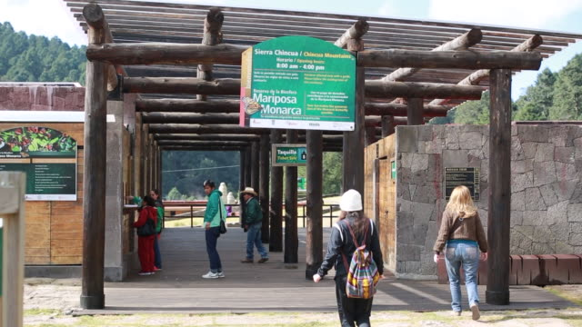 visitors arrive at the conservation culture center and the monarch butterfly sanctuary in michoacan mexico close up shots of signage reading sierra... - invertebrate stock videos & royalty-free footage