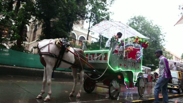 Visitors carry umbrellas in the rain at Gateway of India memorial building View of a horse and carriage on the road by the waterfront in the rain...