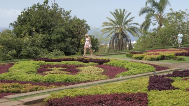 visitors in botanical gardens, funchal, madeira, portugal, atlantic, europe - madeira stock videos and b-roll footage