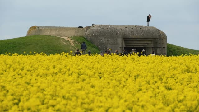 visitors stand on a former german world war iiera artillery bunker on may 3 2019 at longuessurmer france june 6 will mark the 75th anniversary of the... - normandie stock-videos und b-roll-filmmaterial