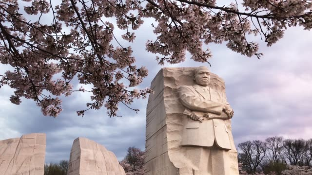 visitors walk around the dr martin luther king jr memorial on the 50th anniversary of king's assassination april 4 2018 in washington dc organized by... - martin luther religious leader stock videos & royalty-free footage