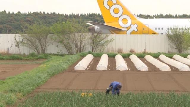 stockvideo's en b-roll-footage met vista desde el cielo la granja de takao shito parece atrapada entre las pistas y vias de circulacion - agricultura