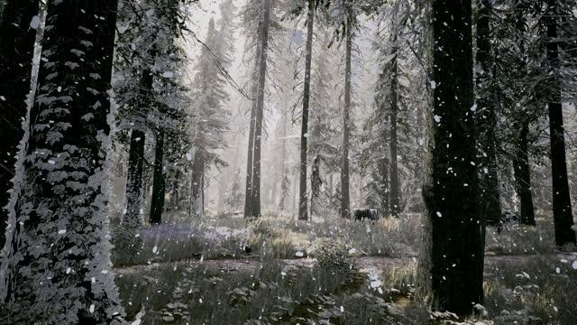 3d-visualisering av årets tidsfördröjningsförändring från sommar till vinter i skogen. fyra säsonger - årstid bildbanksvideor och videomaterial från bakom kulisserna