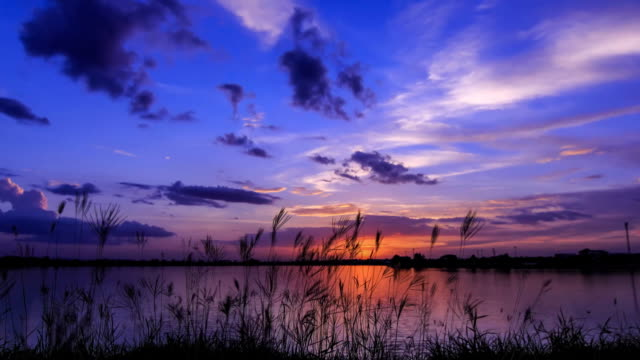 Vivid evening lake side