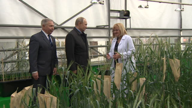 Vladimir Putin on an official visit to Russia's National Grain Centre