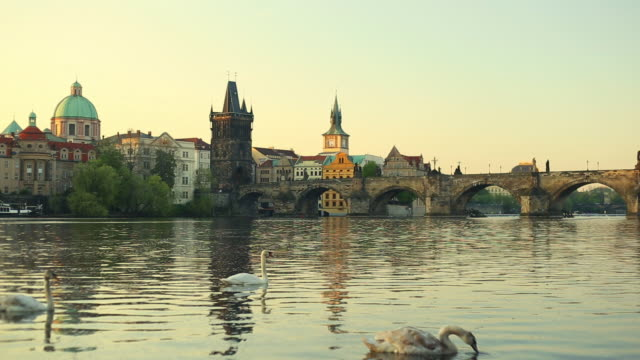 vltava river with prague old town and charles bridge - river vltava stock videos & royalty-free footage