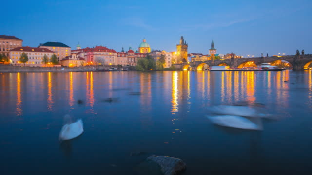 vltava river with swan at prague old town and charles bridge - charles bridge stock videos and b-roll footage