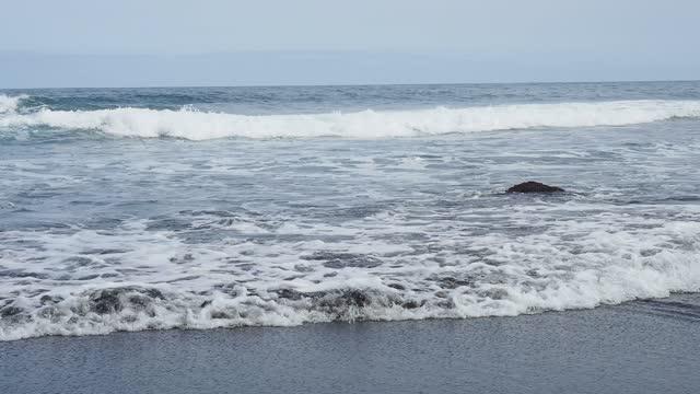 vidéos et rushes de volcanic beach of black sand on the island of tenerife, canary islands. - vague déferlante