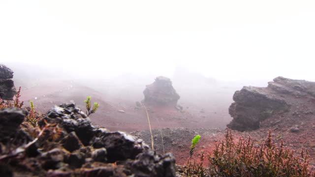 vídeos de stock, filmes e b-roll de terrenos vulcânicos e chuva - ilha da reunião - ilhas mascarene