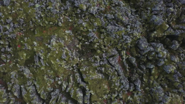 volcanic landscapes of iceland - moss stock videos & royalty-free footage