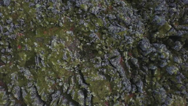 vídeos de stock, filmes e b-roll de paisagens vulcânicas da islândia - musgo