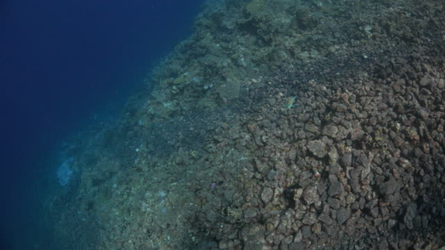 volcanic rock, undersea, island - mineral stock videos & royalty-free footage