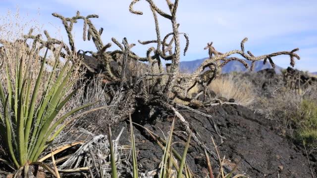 vídeos y material grabado en eventos de stock de roca volcánica - volcán extinguido