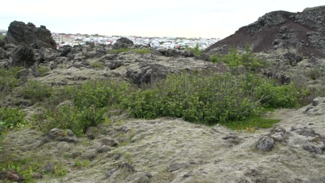 volcanic rocks and stones covered by grass just above the heimaey town, visible in the back, vestmannaeyjar - 1963 stock videos & royalty-free footage