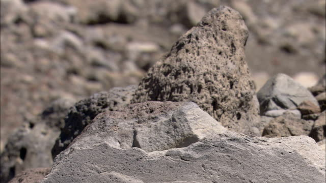 volcanic rocks cover a hillside. - basalt stock videos & royalty-free footage