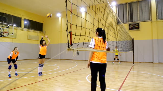 stockvideo's en b-roll-footage met volleybal praktijk binnenshuis - passeren