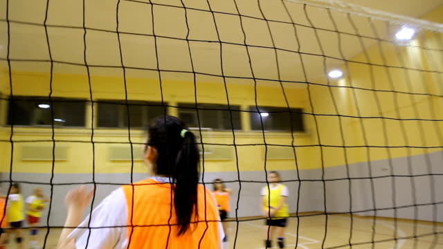 volleyball team training - volleyball sport stock videos & royalty-free footage