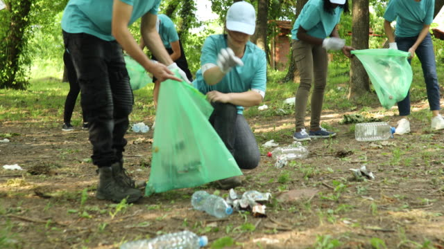 volunteers cleaning a public park - bin bag stock videos & royalty-free footage