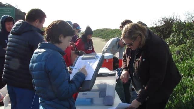 stockvideo's en b-roll-footage met volunteers gather on martin luther king jr. day, 1/16/2017, to clean up ocean beach, 1457 great highway, san francisco - clean