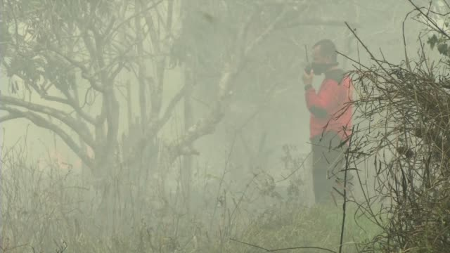 Volunteers in Borneo battle fires which have killed at least 10 and caused respiratory illnesses in half a million people
