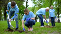 Volunteers planting tree saplings in park, natural resources conservation, care